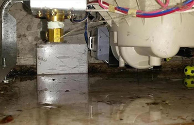 What to Do After Water Damage From an Appliance Leak